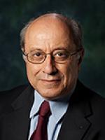 Reza Mishams